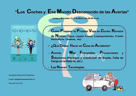 cartel coches web